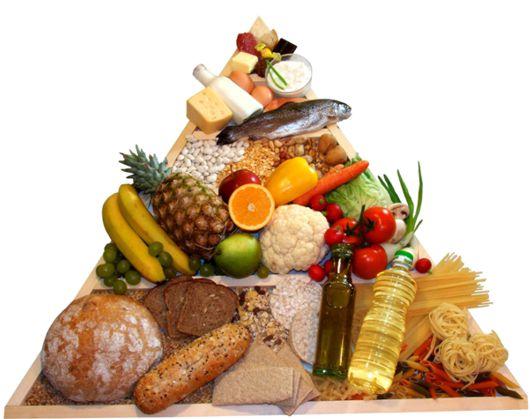 As leis da alimentação – Leis de Escudero